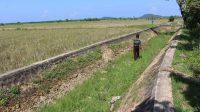 Irigasi di Batang Surantih di wilayah Koto Panjang, Nagari Koto Nan Tigo, Sutera, Kabupaten Pesisir Selatan.