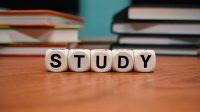 Ilustrasi belajar. (Foto: Dok. Pixabay)