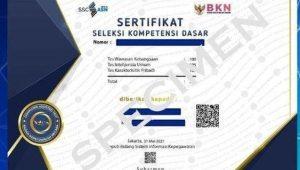 Gagal Download Sertifikat Hasil SKD CPNS, Ini Solusinya