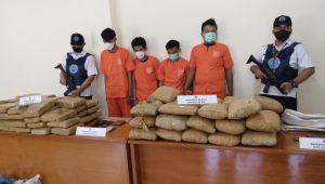 Sejumlah pelaku dan barang bukti ganja dari empat pelaku yang ditangkap di Kabupaten Agam. (Foto: Dok. Istimewa)
